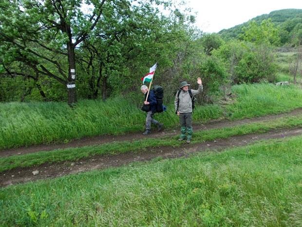 Erdelyi El Camino (10)