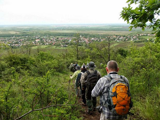 Erdelyi El Camino (11)