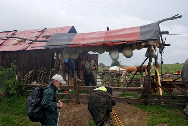 Erdelyi El Camino (5)