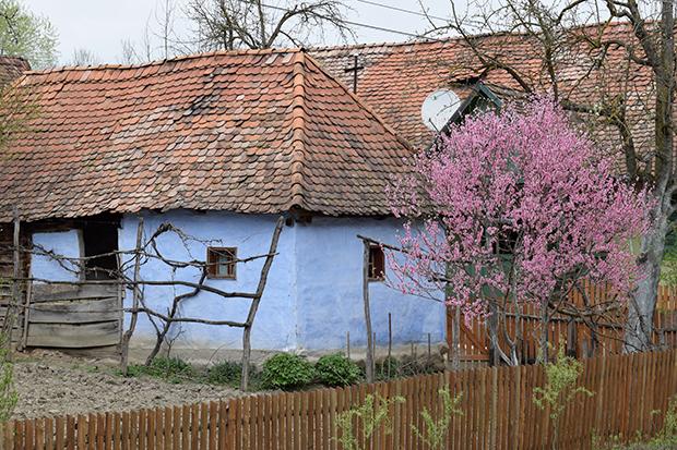 Fotós túra a falusi utcaképért (8)