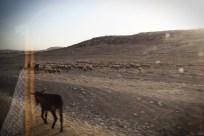 Sur la route de Jérusalem.