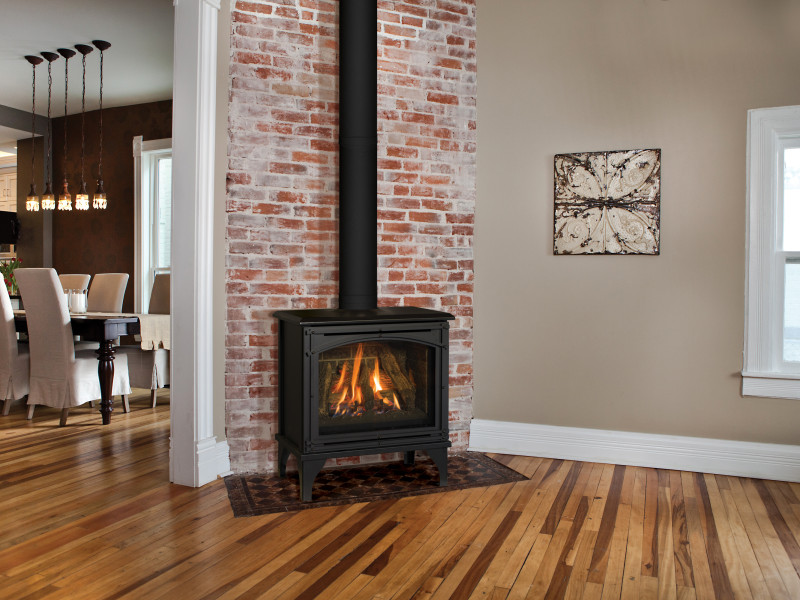 Birchwood 20 Free Standing Gas Fireplaces Direct Vent