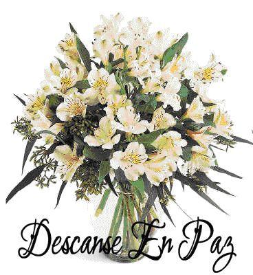 wp 1481135708111 - Descanse en Paz