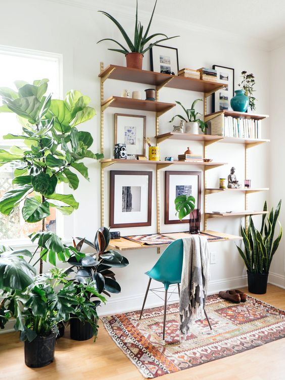 Decorating-With-Plants10