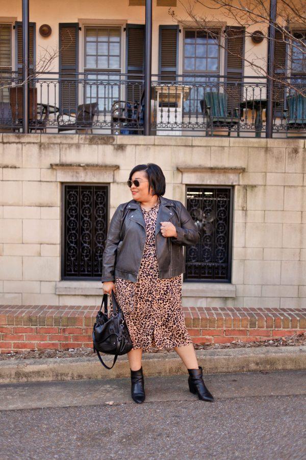 Leopard Print Dress + Leather Moto Jacketr
