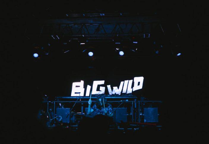 big-wild-4357
