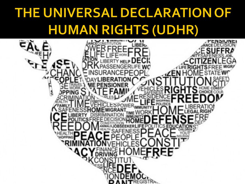 'Mandatory  #Aadhaar' enables violations of the Universal Declaration of Human Rights