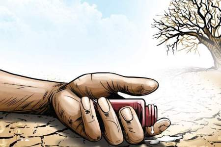Marathwada reports 278 cases of farmer suicides since...