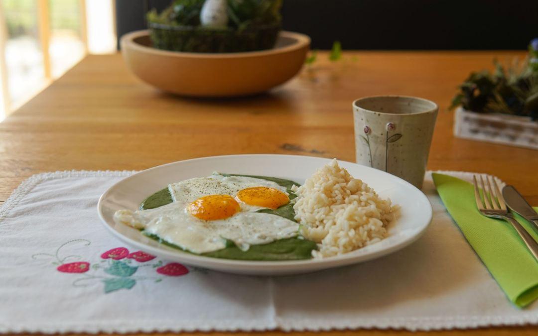 Superfood aus der Natur – Wildkräuter-Spinat