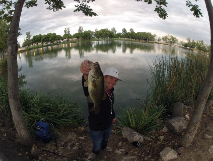 Jig archives kraken bass for Sand hollow fishing report