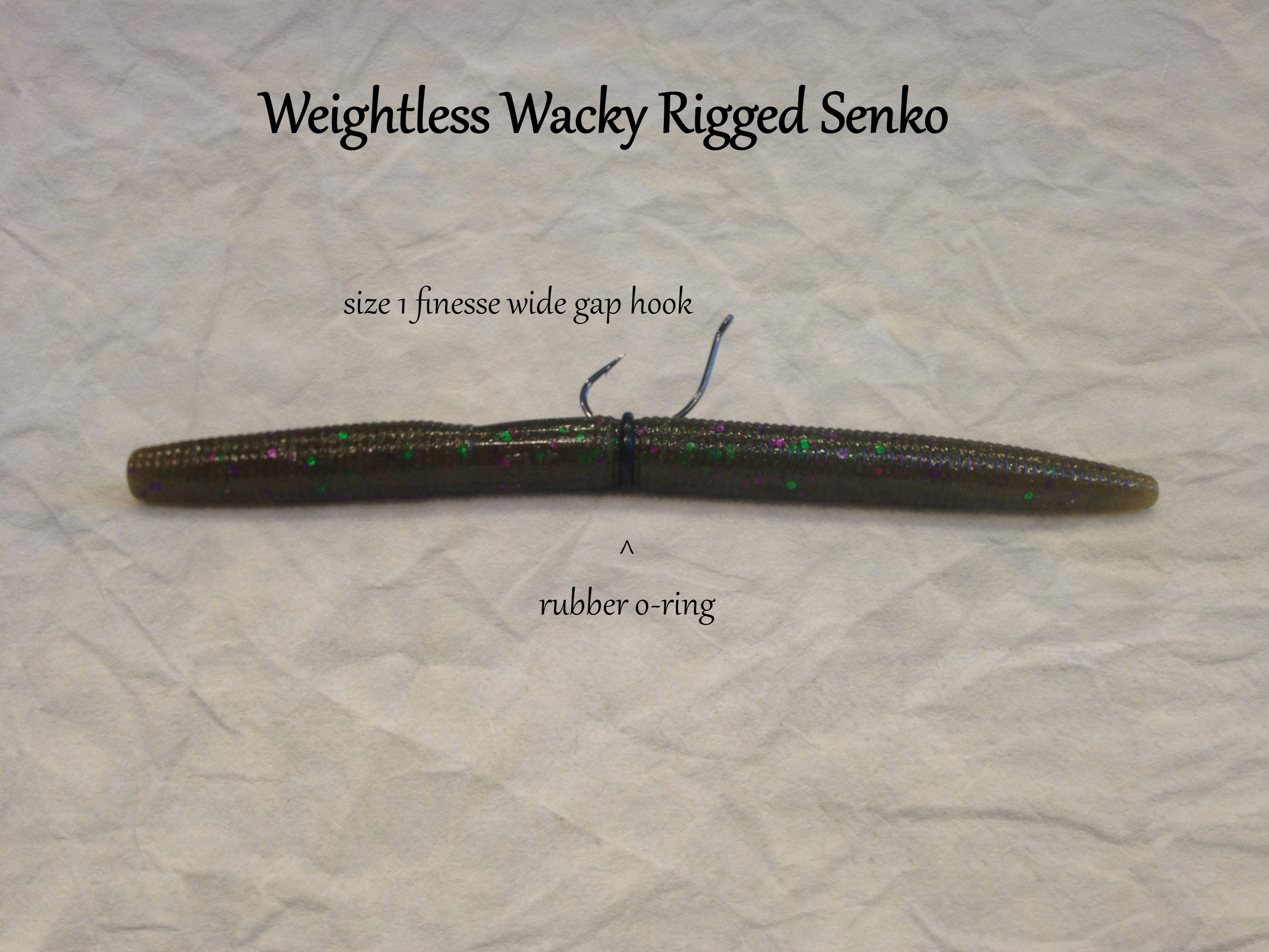 The Best Wacky Rigging Set Ups For Bass Fishing