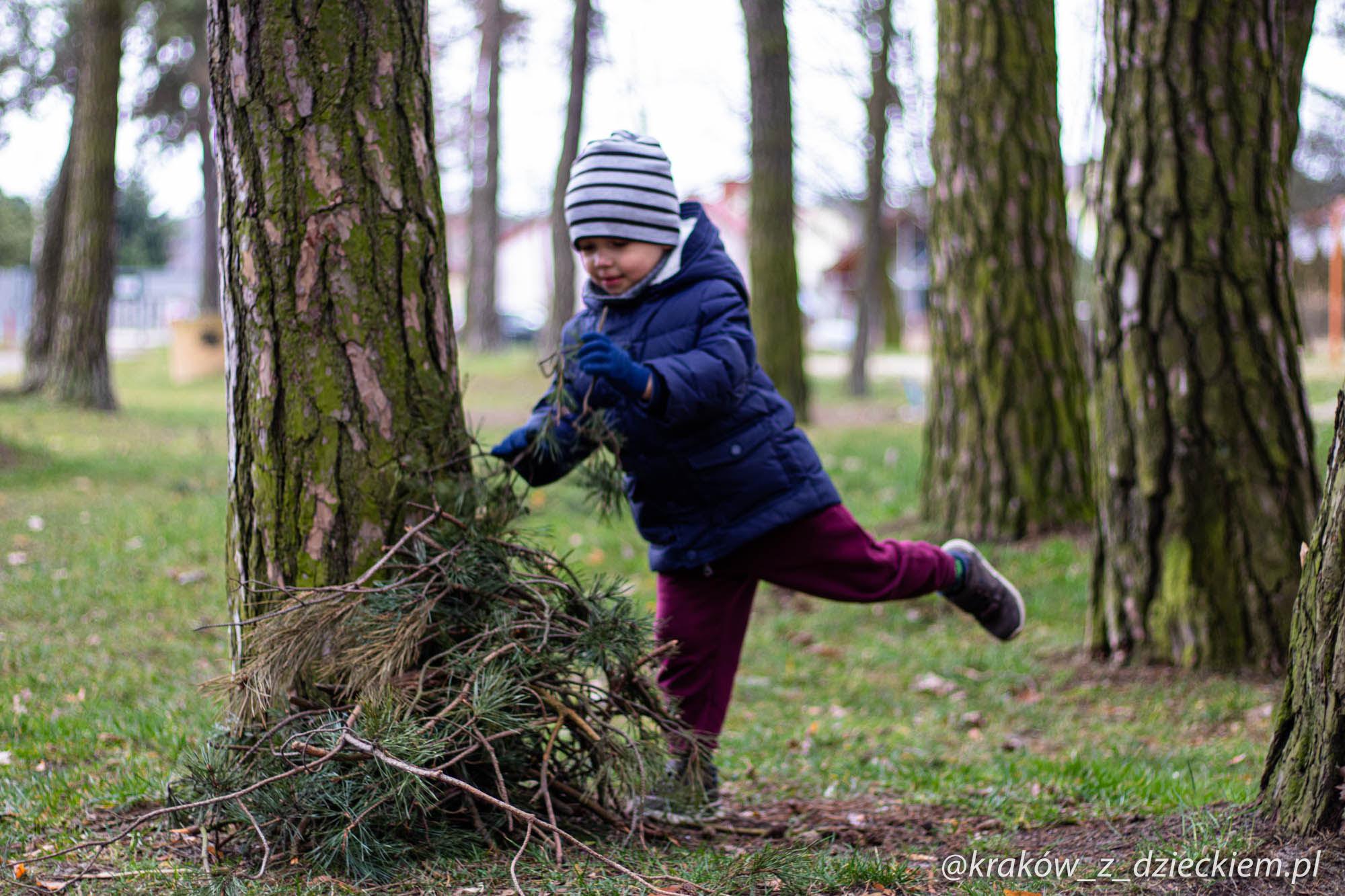 zabawy w lesie