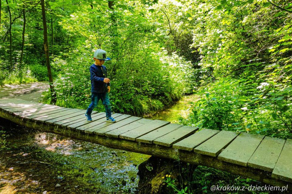 spacer po lesie witkowickim z dzieckiem