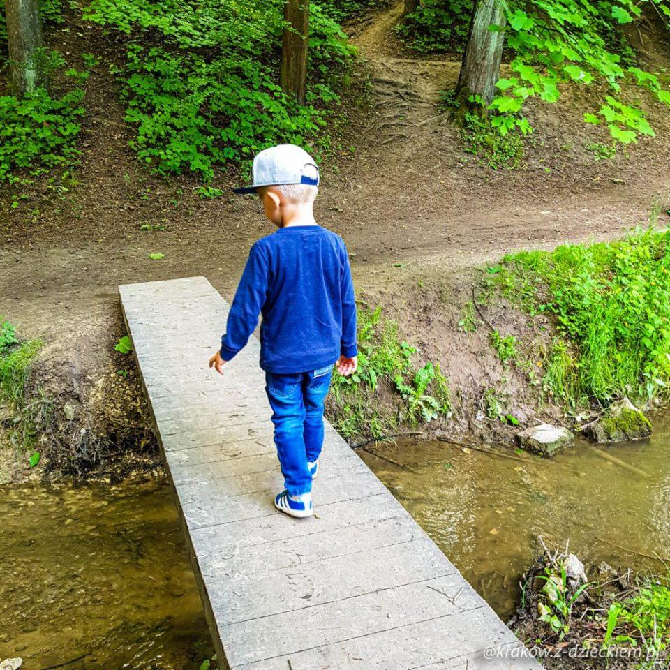 wąski most, spacer po lesie witkowickim