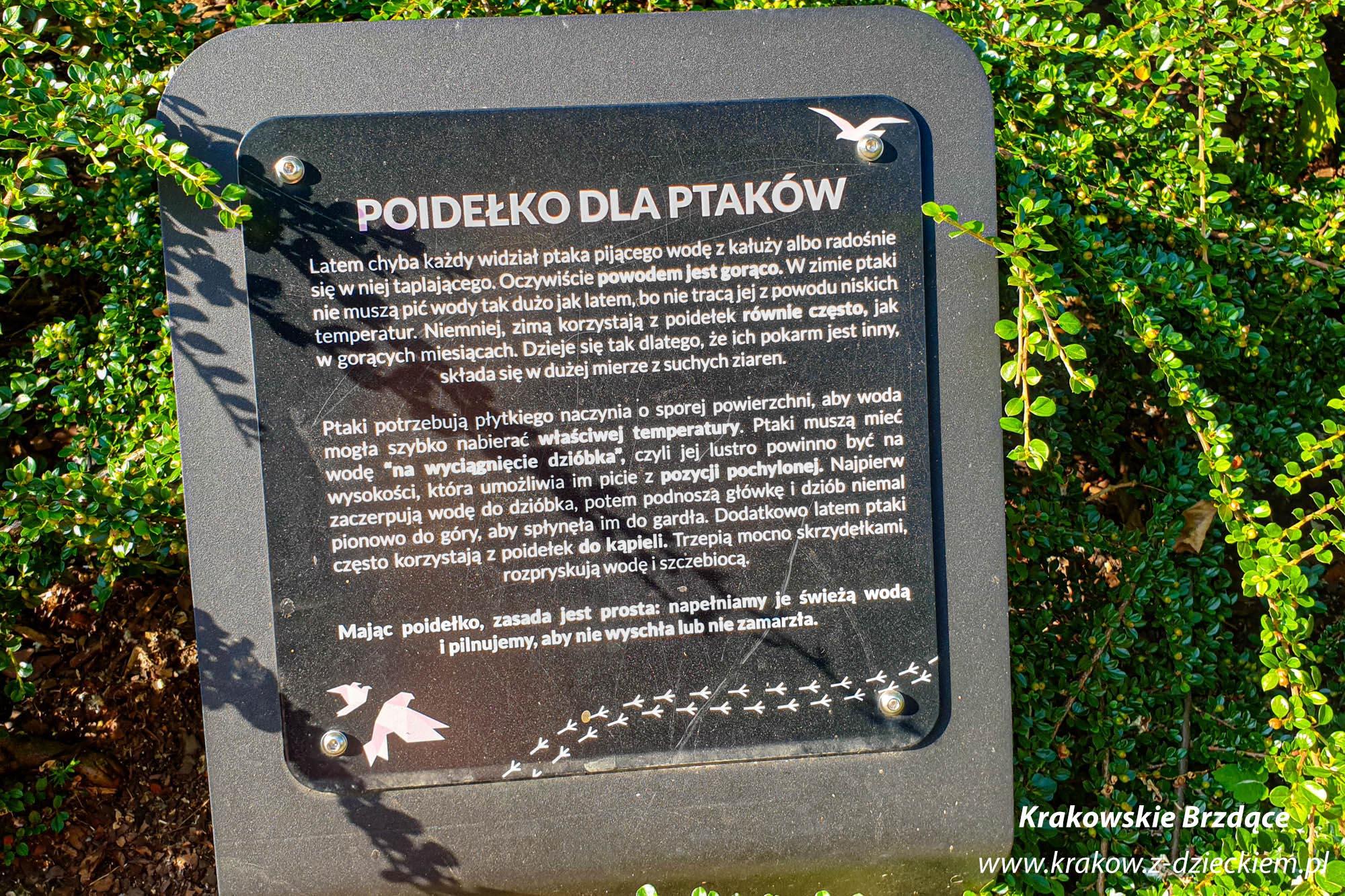 Ptasi Ogród Krakowian