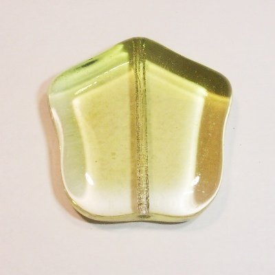 kraal tulp olijf 24 mm