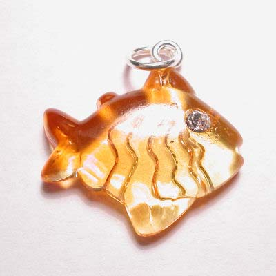 acryl vis geel oranje 20x22 mm