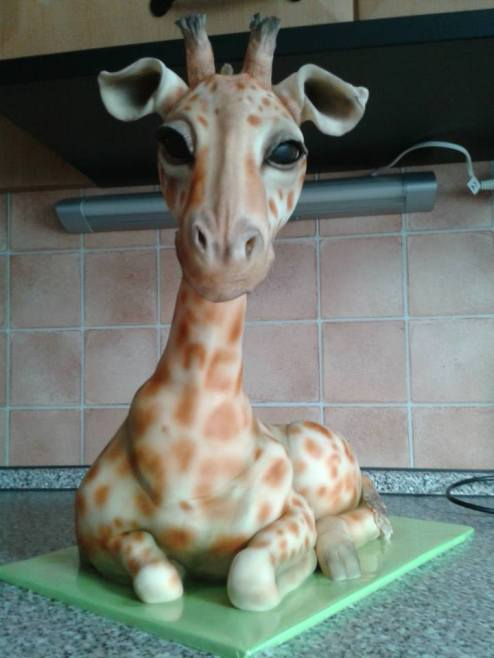 dort žirafa