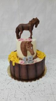 Dort s koňma