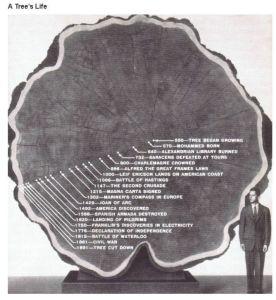 tree_0