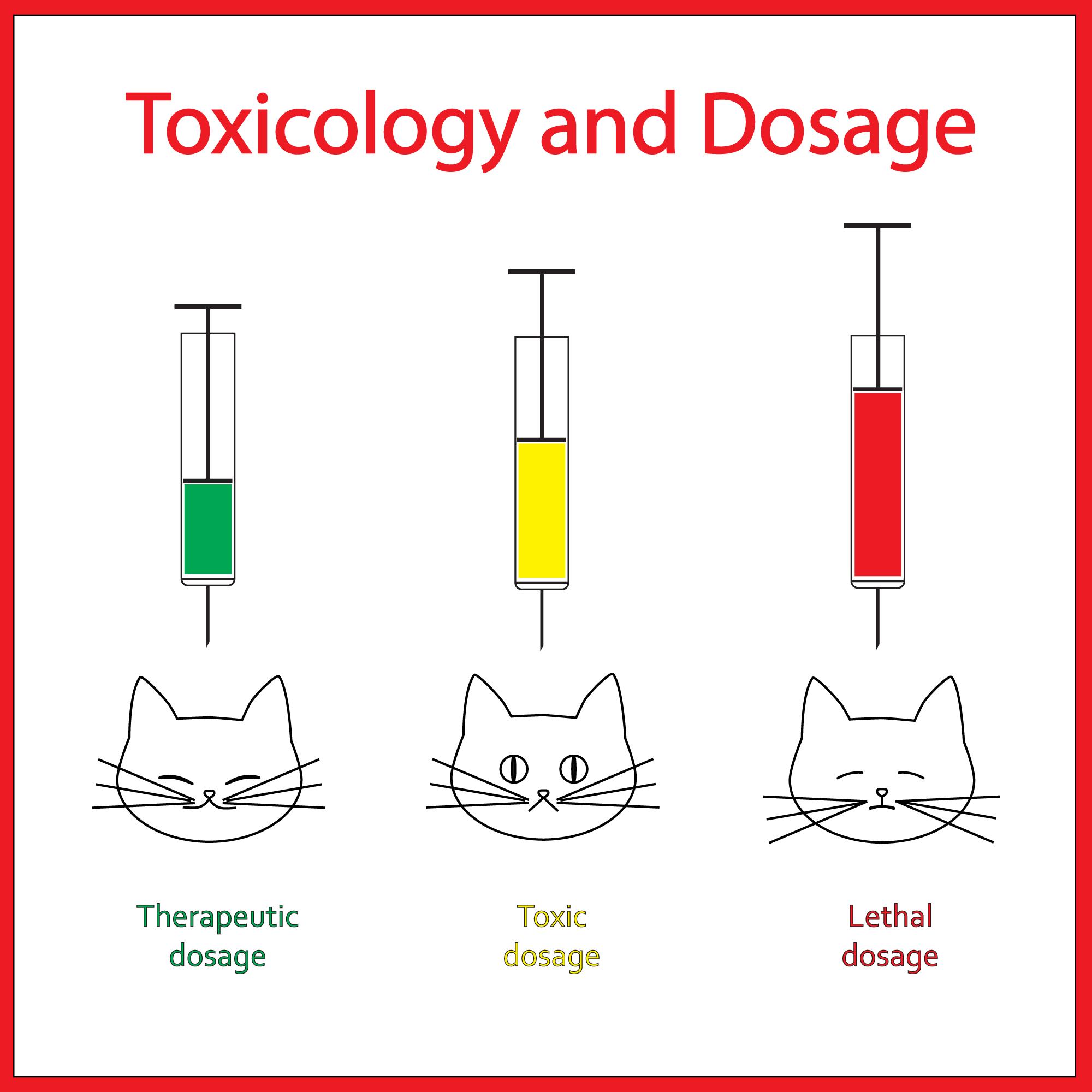 Kratom Dosage Guide & Tips