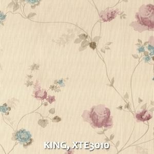 KING, XTE3010