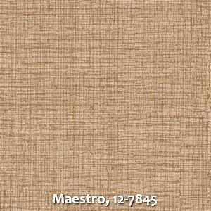 Maestro, 12-7845