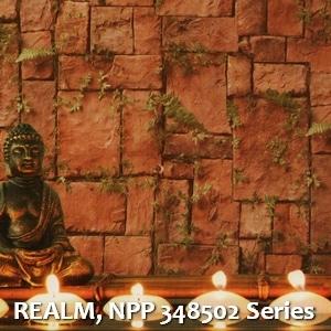 REALM, NPP 348502 Series