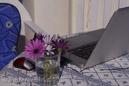 Blommor till min skrivplats
