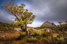 Australia - Tasmania - Cradle Mountain - The Mountain Other View