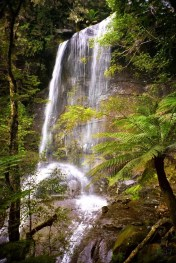 Australia - Tasmania - Great Western Tiers - Fall