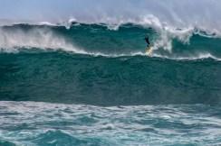 Hawaii - Oahu 002 North Shore - Surfer
