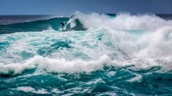 Hawaii - Oahu 005 North Shore - Surfer