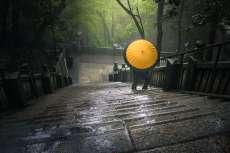 Japan - Sanuki - Shikoku - Gelber Schirm