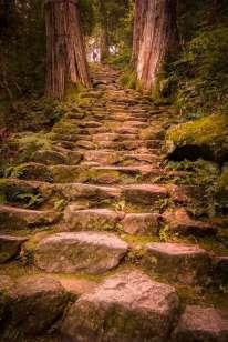 Japan - Wakayama - Nachi - Treppenweg 04