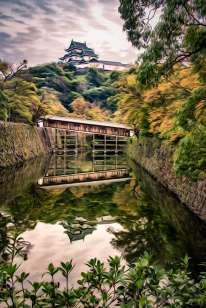 Japan - Wakayama - Wakayama - Burg