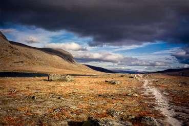 Norway - Dovrefjell 02
