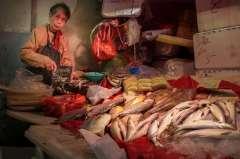 Street Photography - Hong Kong - Fish Market