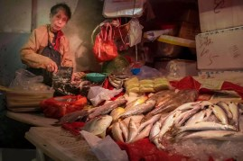 Street Photography - Hong Kong - Fish Market
