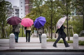 Street Photography - Japan - Umbrellas