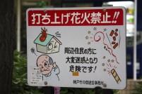 20100427_060802-IMG_7236_ji copy