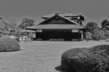 20110405_055213-IMG_3008_ji