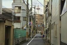 IMG_0612_ji copy