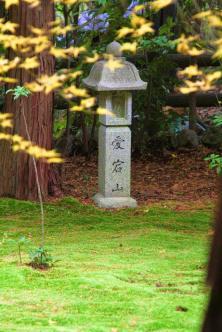 IMG_2189_ji copy