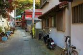 IMG_3268_ji copy