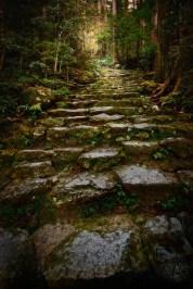 Japan - Nachi - Der Steinige Weg 01