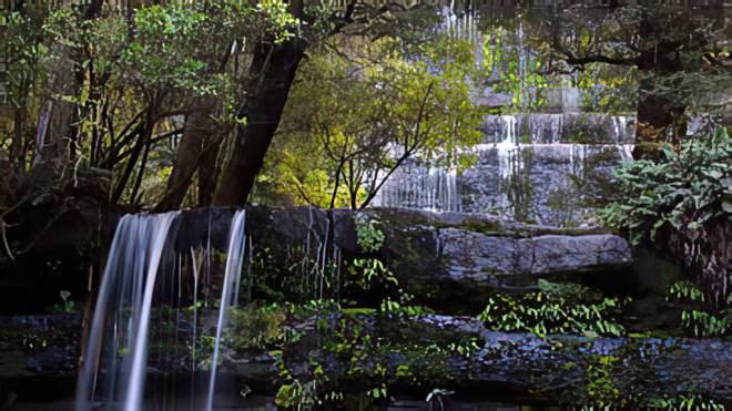 YouTube-Tasmania- Pure Nature (Tasmanien Tassi) - HD
