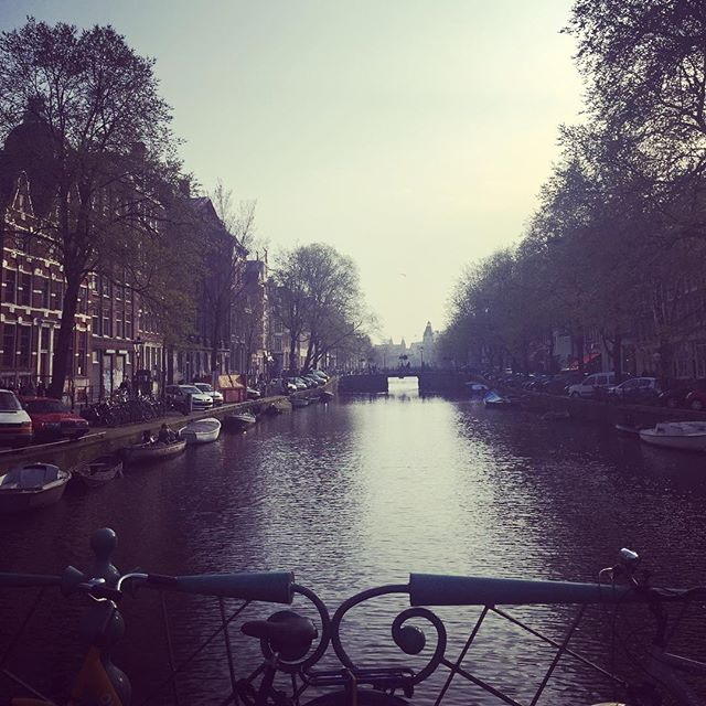 Krachtig #amsterdam #leavingflatbush
