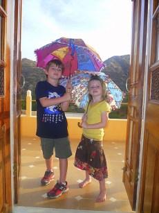 parasol2