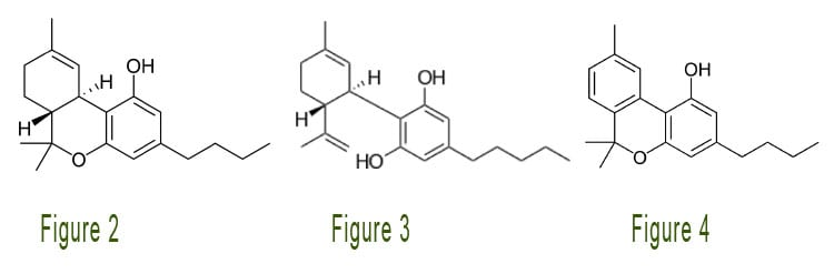 Tetrahydrocannabinol_Cannabinol